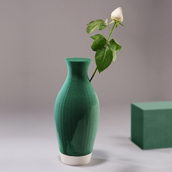 Floral foam (usually used for arranging flowers) shaped as a vase. another beautiful idea by designer Shay Shafranek.
