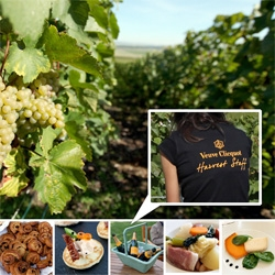 The Food of Veuve Clicquot Harvest ~ When you start grape picking early in the morning and need to last through the day ~ what do they feed you? Deliciousness!