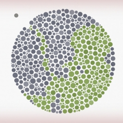 Ishihara  by Yoav Brill - A short film about color blindness.