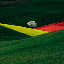 A selection of beautiful photographs by Italian photographer Franco Fontana  - [careful - nsfw at the way bottom]