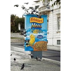 To spread free samples is not an original idea for a brand, but Friskies decided to feed bird in streets to gain peolple attention.