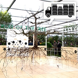 An entire apple tree uprooted is the focal point of The Fruit of the Tree installation from East Malling Research at the RHS Chelsea Flower Show. Incredible display including hydroponic apple trees and gorgeous design from Physical Pixels.
