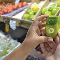 Camp Nectar used molds to create 'real juice boxes' by having fruit grow into juice box molds.