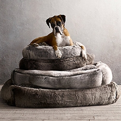 Restoration Hardware takes their Faux Fur to a new level this holiday season with dog beds, dog throws, and even dog vests.