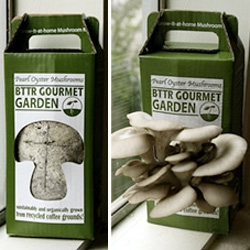 Easy-to-Grow Mushroom Garden from Back To The Roots