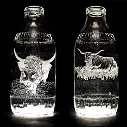 Milk Bottle Project by Charlotte Hughes-Martin.