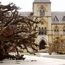 Some huge rainforest tree stumps from the Tropics will adorn the Natural History Museum and Pitt Rivers Museum, in Oxford for a year.