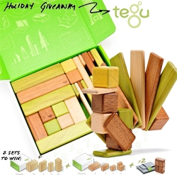 NOTCOT Holiday Giveaway #1! Tegu! A chance to win two super sets of these magnetic wooden blocks, including a first look at the new Jungle Set!