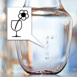 Valentin Vodev's pictograms engraved on glassware are a fun new way of incorporating playful instructions