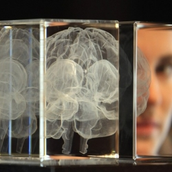 'My Soul' by Katharine Dowson is a laser-etched lead crystal glass formation in the shape of a brain, created using the artist's own MRI scan.