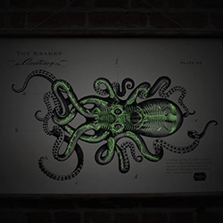 Kraken Rum Store has a new Kraken Anatomy Print (with wood top and bottom!) and... glow in the dark surprises at night!