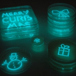 CURB has launched its latest low-impact innovation. GlowFungi, also known as DiscoFungi, is a marketing tool that uses glow-in-the-dark bacteria.