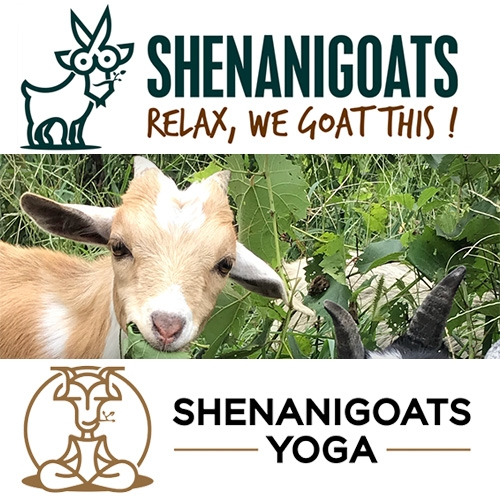 Shenanigoats - from Goatscaping to Goat Yoga to Goat Parties in Nashville. Love the logos.