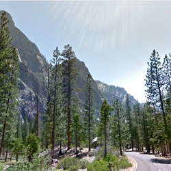 Google Earth announces street view for 5 California National Parks.
