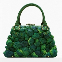 """Goût de luxe"" (luxury taste), great work of art of photographer Fulvio Bonavia, mixing fashion and vegetables"