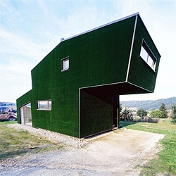 Amalia House by GRID Architects, in Austria. If you take a closer look, you´ll notice it´s wrapped on artificial grass.