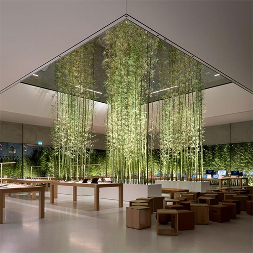 Apple Store in Cotai Central, Macau by Foster + Partners. A glowing cube with pockets of bamboo!