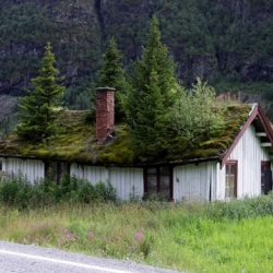 Norwegians have their own way of going green, and quite literally. An impressive collection of green roofs.