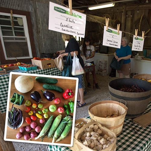 Flexible Plan Pack-Your-Own CSA Farm Boxes from Green Door Gourmet in Nashville, TN and a peek inside their incredible farm shop. Love the idea that even travelers can jump in and try their fresh produce boxes (and pick their own!)