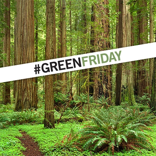 Green Friday - instead of Black Friday visit a California State Park! Save the Redwoods League, CA State Parks Foundation and CA State Parks are providing a free day-use parking pass for you to share time with friends  and give thanks for our beautiful state parks.