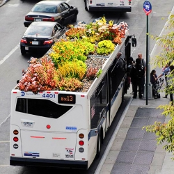 Marco Castro Cosio's green roofed bus is a garden to-go!