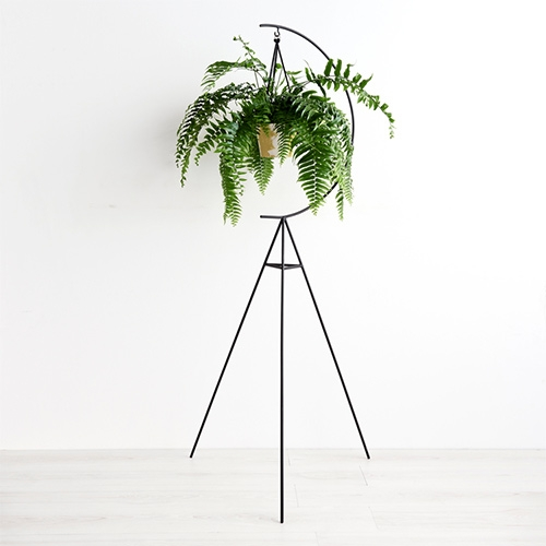 Capra Designs Crescent Plant Stand. Made in Melbourne from powder coated steel.