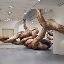 Brazilian artist Henrique Oliveira creates sculptures of tree trunks, making them look like they burst through the walls of the galleries.