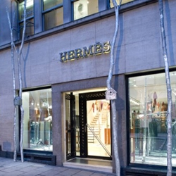 For Christmas, Hermes has planted silver birch trees around its London store, complete with bird boxes and  forest sound effects
