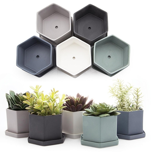 "Chive Hexi Pot & Saucer - perfect for succulents! 4"" diameter and 3"" tall."