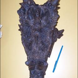 Dragon skull discovered in South Dakota.  =)