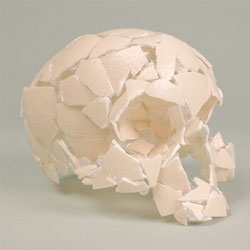Homo ab ovo, a skull made of eggshells by Christian Gonzenbach.