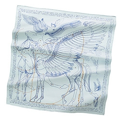 A close up look at Le Pégase d'Hermès Silk Twill Scarf designed by Christian Renonciat! It's a blueprint for building a pegasus and wearable wings... with da vinci inspirations...