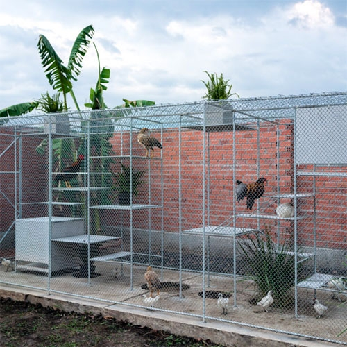 Chicken House in Vietnam by Tropical Space. A large caged space for the ducks and chickens to live, where the humans can watch, visit, and grow vines to create shade for them.