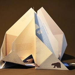 Changzhi Lee creatively folded the Ice Age brochure up like an iceberg, as you unfold the pages, you melt the ice and destroy the polar bears' habitat...