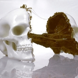 Selection of edible chocolate skulls for a macabre twist on Valentines Day.