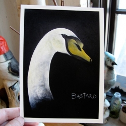 """Amy Ruppel gets revenge on birds that have attacked her with her """"Mean Birds"""" print series."""