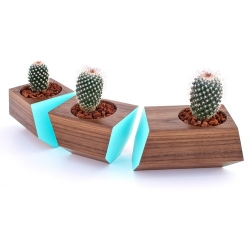 The Boxcar succulent planter. Plant with style. Made in the RDH shop in SE Portland, each Boxcar features grain-matched hardwood and is perfect for any window sill or table centerpiece.