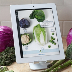 The Professional Chef comes to the iPad - The classic Culinary Institute of America's textbook is now available full of videos and other digital enhancements on the iPad.