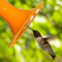 J Schatz Hummingbird Feeders.