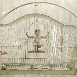 The ironic, clever and perfect Julian Wolkenstein's photography. Animal-humanized and caged Humans. Just a metaphor of our world.