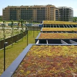 The Oliver kindergarden in Zaragoza, Spain, features a nice green roof, which actually looks kinda reddish at the time. It has inner patios covered with wood beams. For sustainakids?