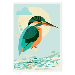 Kingfisher print by Neil Stevens (Crayonfire).
