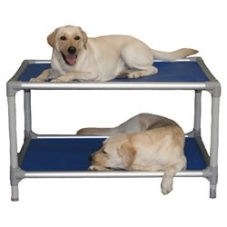 Kuranda Aluminum Dog Bunk Bed - the ergo, chew proof, highly recommended beds now come in bunk beds! Bucky loves his one story one with a sheepskin on it - it has outlived all the other beds we've tried.