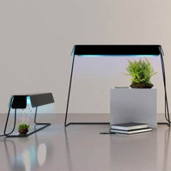 Kusamono is a horticultural accent lamp designed by Florent Coirier that answers the needs of both humans and plants.