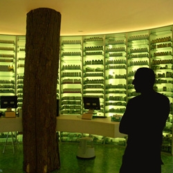 The Lairesse pharmacy in Amsterdam has something more interesting than the green lighted interior.