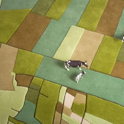 Landcarpet, winner of EDIDA 2009 for best floor covering China is a series of area rugs, inspired by nature and farmed landscapes showing the world from straight above, as we usually see it only out of the window of a plane.