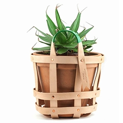 Special Cool Hunting Edition of byAMT's Leather Strap Planter! The handles are the CH signature green.
