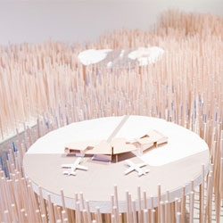 Toronto-based Lateral Office proposes an Arctic city built on top of 4,500 wooden dowels. The installation is a part of Landscape Futures at the Nevada Museum of Art.