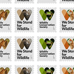 New identity for the Wildlife Conservation Society by Pentagram's Michael Bierut and team. Love the stamps!