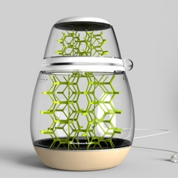 The Lepsis is a terrarium for growing edible insects at home.